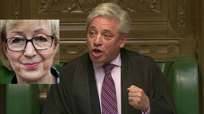 "John Bercow under fire for calling stupid woman ""a stupid woman"""